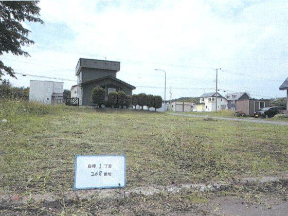 土地番号【74】